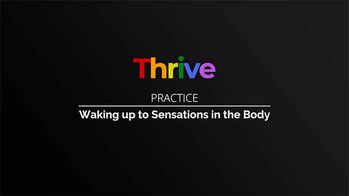 Thrive class 10 - Waking Up to Sensations in the Body