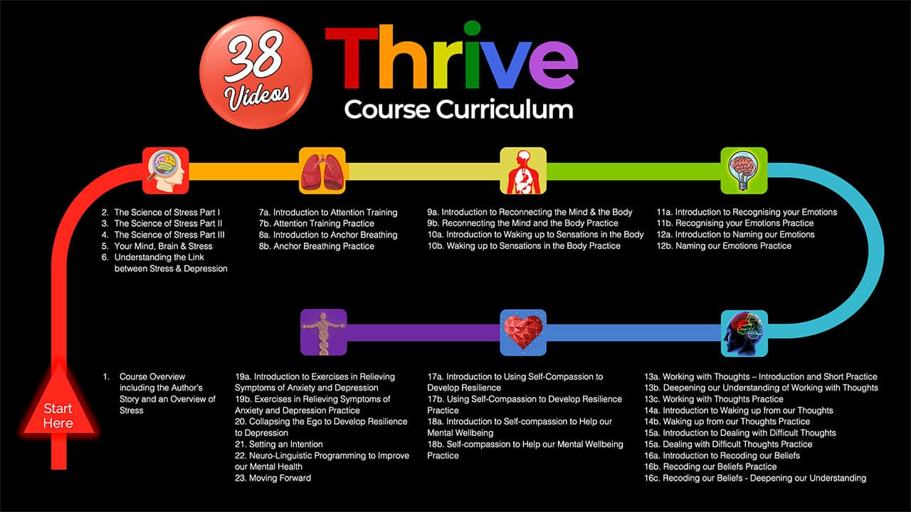 thrive course curriculum